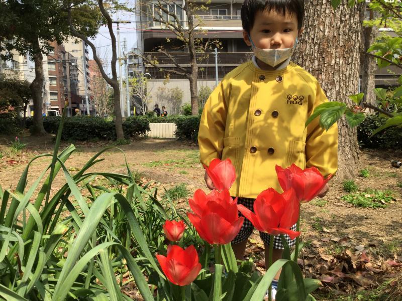本日は外遊び《大阪市西区、新町にある幼児教育一体型保育園HUGアカデミー》